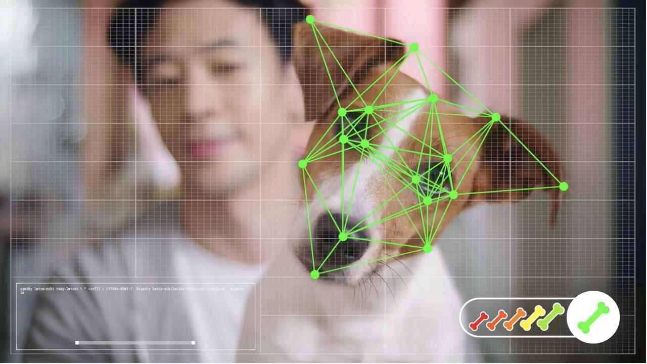 線上購物的最高境界,連狗都可以自己上網買東西